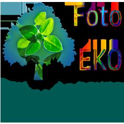 Foto EKO Tiskneme pouze vyžádané fotografie